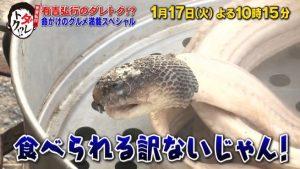 タイコブラ料理 画像
