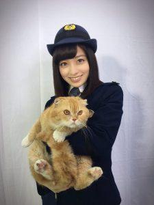 ティティ 猫 画像