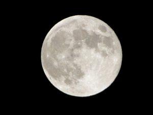 中秋の名月 いつ 十五夜 画像