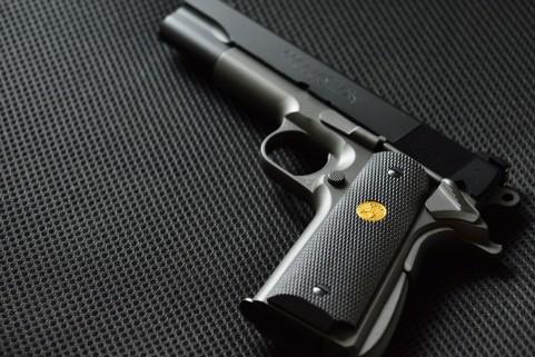 ラスベガス 銃乱射事件 ネバダ州 マンダレイ・ベイ・ホテル 画像