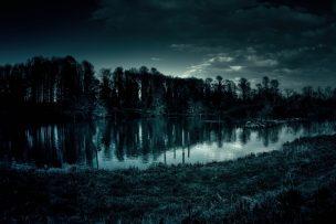 池の水ぜんぶ抜く大作戦 ロケ地 場所 ゲスト 出演者 画像